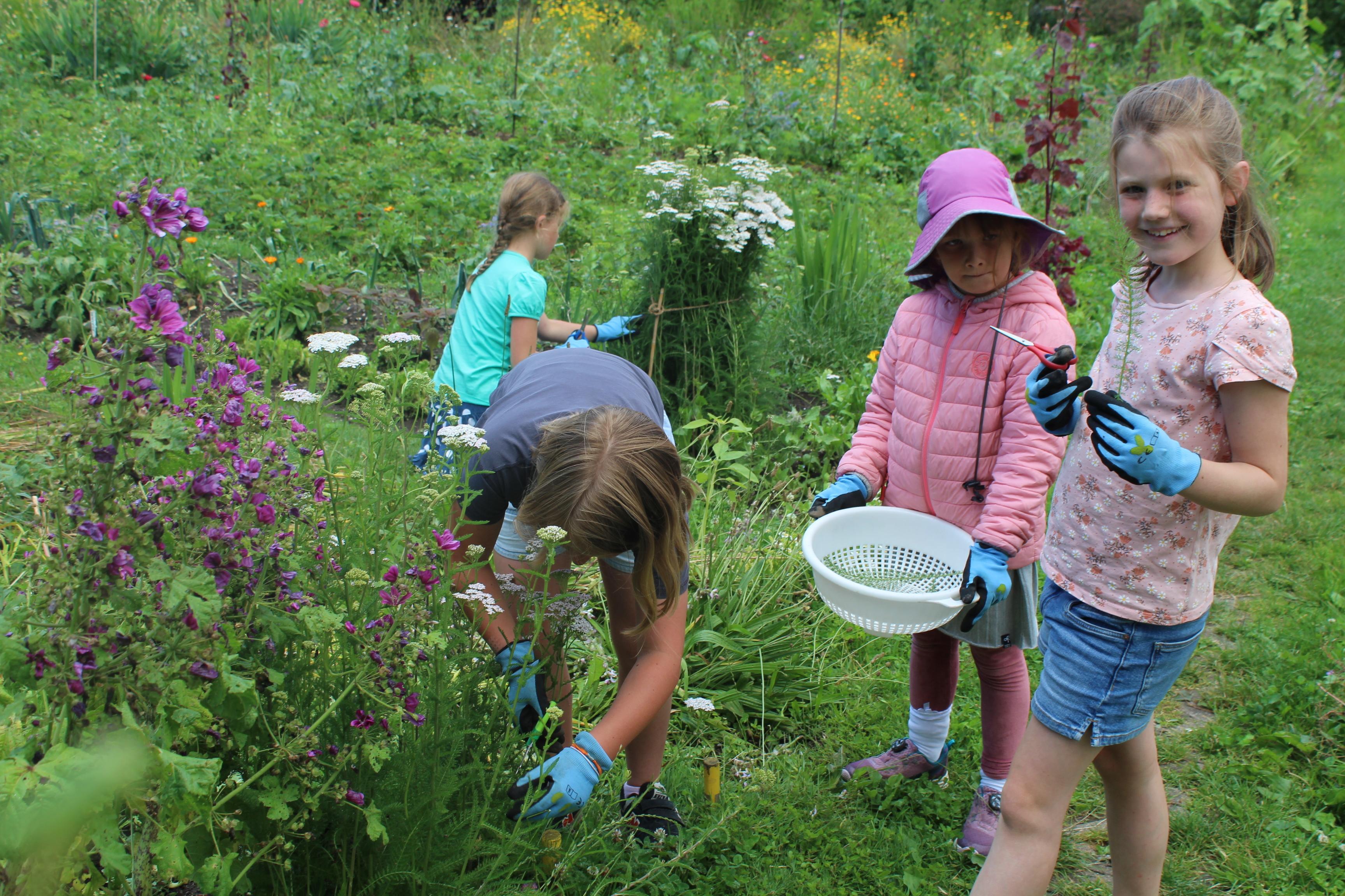 Gartenatelier für Kinder!