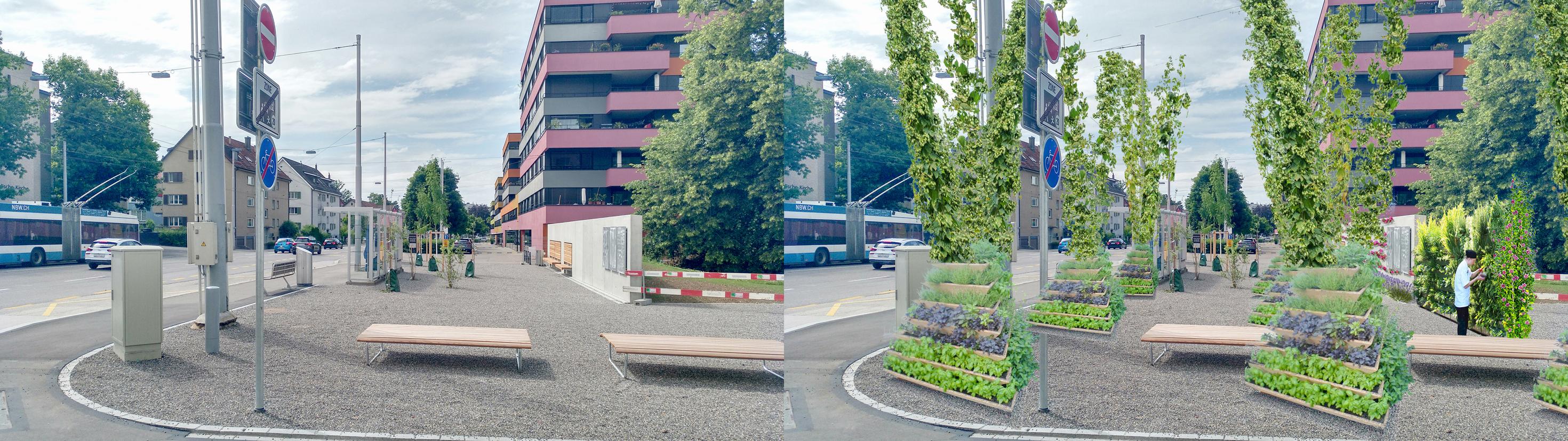 ÖV-Gärten – ÖV-Haltestellen, mit Schatten im Sommer und Sonne im Winter, mit weniger Lärm weniger Feinstaub, dafür mehr Blüten- und Kräuterduft!