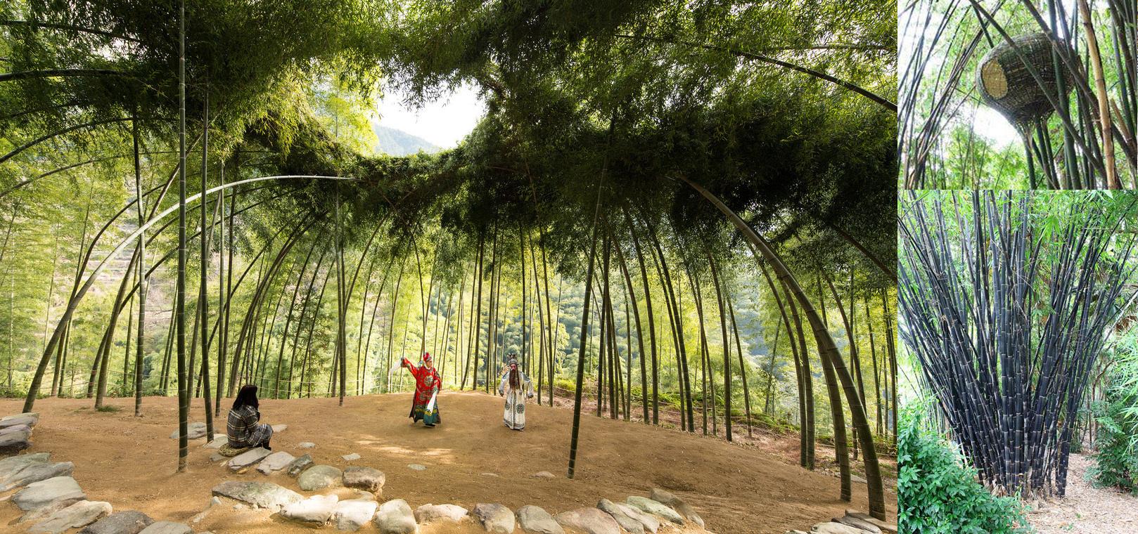 Pflanz-Events für nachwachsende Rankhilfen bzw. Baumaterial z.B. Bambus-Nutzwäldchen, die gleichzeitig als schattige Spielplätze u.v.m. dienen