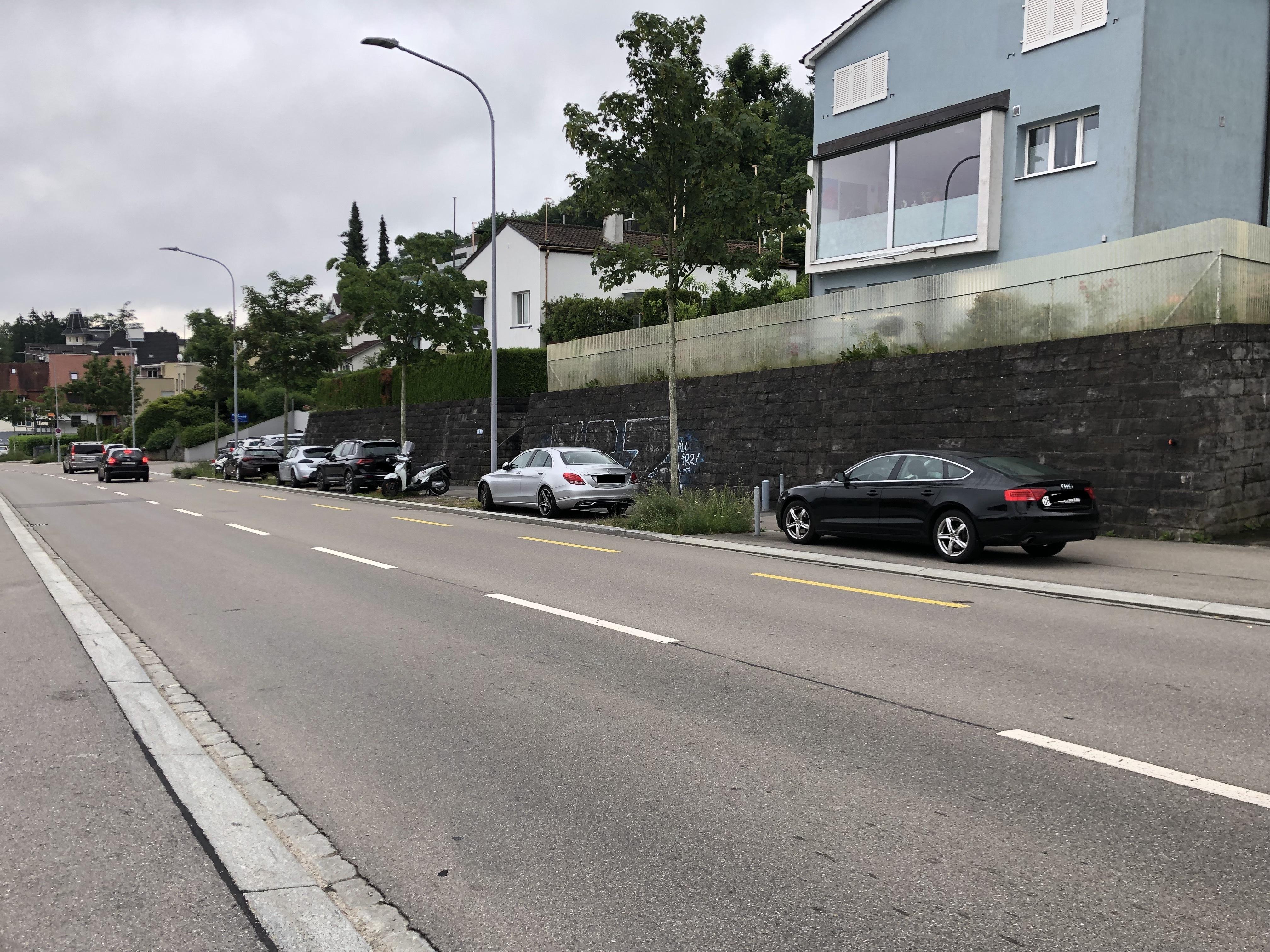 Baumzwischenräume begrünen, Parkieren verunmöglichen